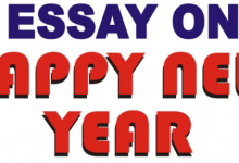Photo of Happy New Year Essay 2021- HNY 2021 Essay Resolutions