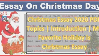 Photo of Christmas Essay 2020 PDF Topics   Introduction   My Favourite Holiday is Christmas Essay