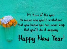 best new year wishes quote